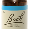 Chicory N°8 Fleur de Bach Original - Flacon de 20ml