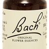 Rock Water N°27 Fleur de Bach Original - Flacon de 20ml