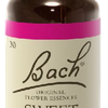 Sweet Chestnut N°30 Fleur de Bach Original - Flacon de 20ml