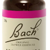 Willow N°38 Fleur de Bach Original - Flacon de 20ml